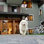 Hotel Nevada Foto
