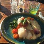 Sommerdagens fisk