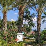 Crystal Springs Beach Hotel Foto