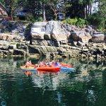 Kayak rentals!
