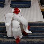todas las tardes un animalito diferente hecho con toallas