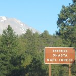 Shasta- Trinity National Forest, CA