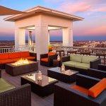 The Partridge Inn Augusta, Curio Collection by Hilton