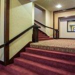 Foto de Embassy Suites by Hilton Chicago - O'Hare/Rosemont