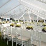 Wedding reception, front lawn near Horse Fountain