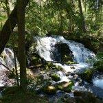 In 15 Minuten Fussdistanz liegt dieser wilde Wasserfall im Wald.