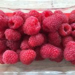 Homegrown Raspberries