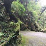 Furen Limestone Cavern Foto