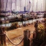 Photo of The Boat House Cafe Gosport Marina