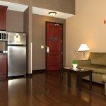 Suite Living/Kitchen Area