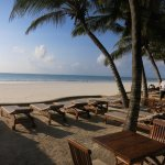 Blue Marlin Beach Hotel Photo