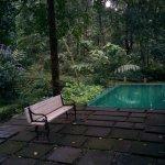 Photo de Mayapott Plantation Villa