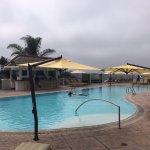 Adult Pool and Bar