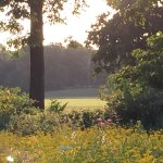 Foto de Coworth Park - Dorchester Collection