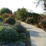 jardin botanique en décembre