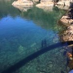 Foto de Orca Island Cabins