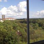Vista al pantanal