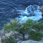Mount Desert Island Foto