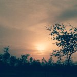Loveli Nature in Dudhani