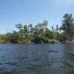 Kayaking in Lily Creek Lagoon