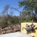 Mohlabetsi Safari Lodge Foto