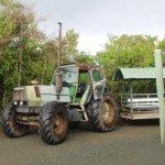 Tractor tour train