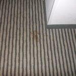 Versiffter Fußboden