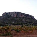 Photo of Turismo Rurale Sa Tanca e Bore