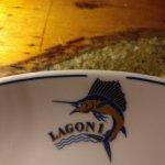 Photo de LAGON 1
