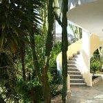 Photo of Afentoulis Studios