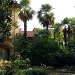 Photo de Villa Palmitia B&B