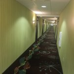 Hampton Inn Suites Wheeling - The Highlands