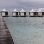 Water bungalows are awesome
