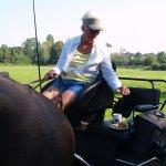Altijd de paarden onder controle, ook als je aandacht naar appeltaart uitgaat