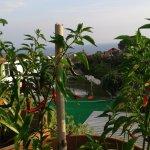 Foto di Hotel Matarese