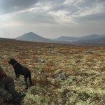Photo of Rondane Gjestegard