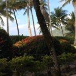 Photo de Beach Club