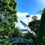 La Loma Jungle Lodge and Chocolate Farm Foto