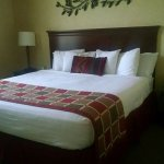 Best Western Plus Ticonderoga Inn & Suites Photo