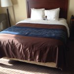 Smoke-free and very clean and cozy Inn. Located on 545 Powell Drive, (walking distance from The