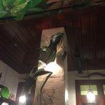 Iguana Mia Foto
