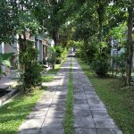 Samui Heritage Resort Foto