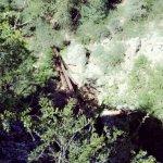 Tonto Natural Bridge State Park Foto