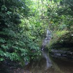 Wigmore's Waterfall Foto