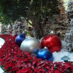 Christmas time at the Beua Rivage1