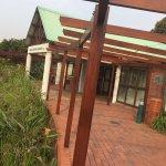 Durban Botanical Gardens Foto