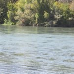 Sacramento River Bend Area