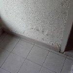les murs du studio en cloque ! piéce de vie...