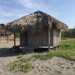 La Ceiba de Manguito