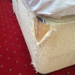 Another one of the Twin Beds showing damaged bed fabric